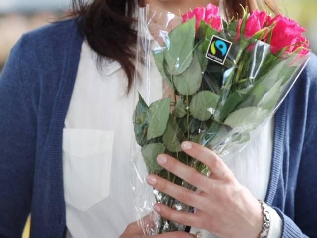 rosen2.jpg