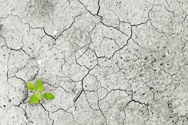 Der Umweltschutz gehört zu den größten Herausforderungen unserer Zeit.